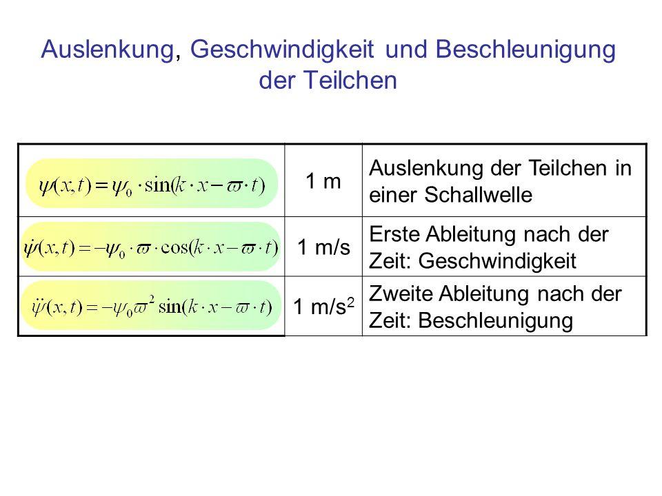 Auslenkung, Geschwindigkeit und Beschleunigung der Teilchen