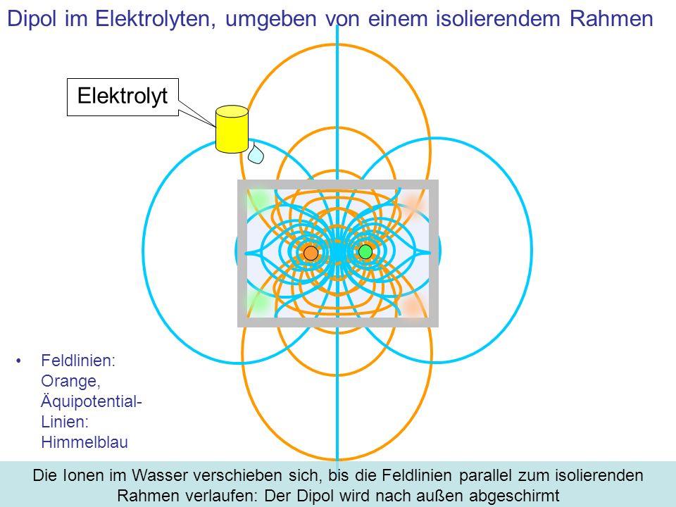 Dipol im Elektrolyten, umgeben von einem isolierendem Rahmen
