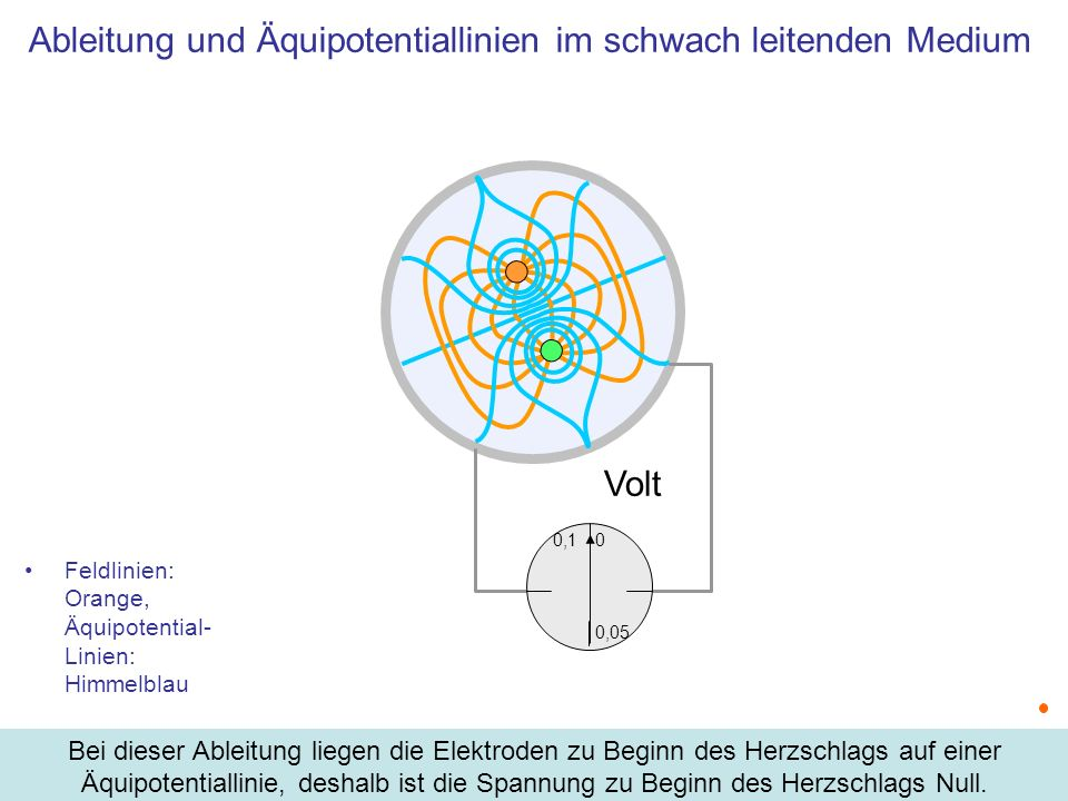 Ableitung und Äquipotentiallinien im schwach leitenden Medium