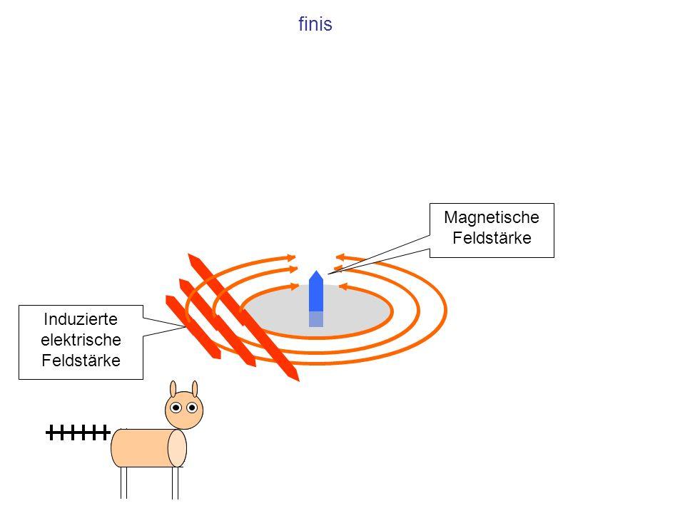 finis Magnetische Feldstärke Induzierte elektrische Feldstärke