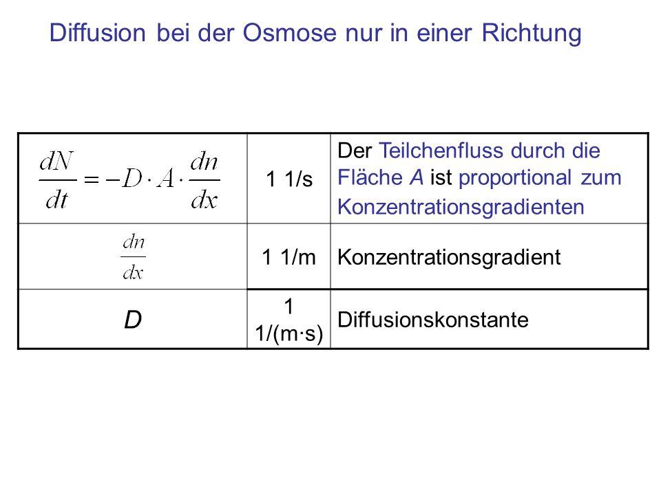 Diffusion bei der Osmose nur in einer Richtung