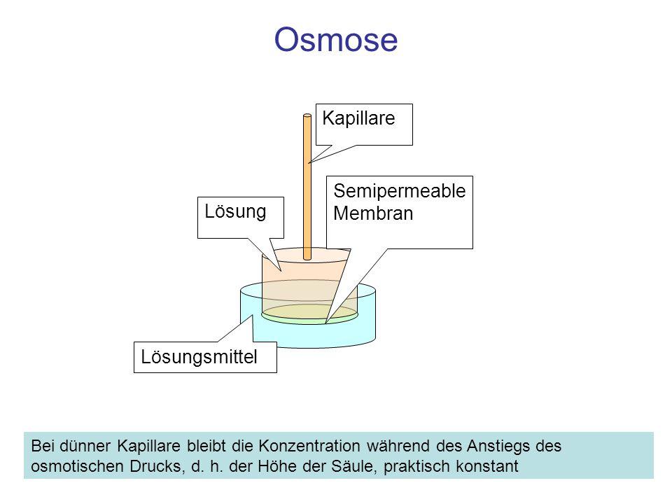 Osmose Kapillare Semipermeable Membran Lösung Lösungsmittel