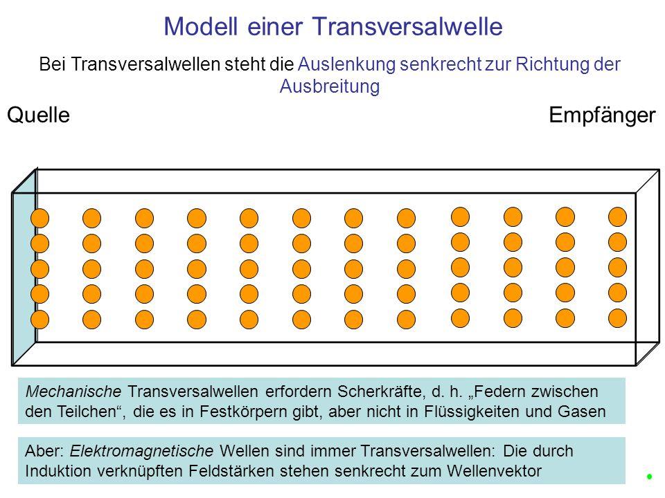 Modell einer Transversalwelle