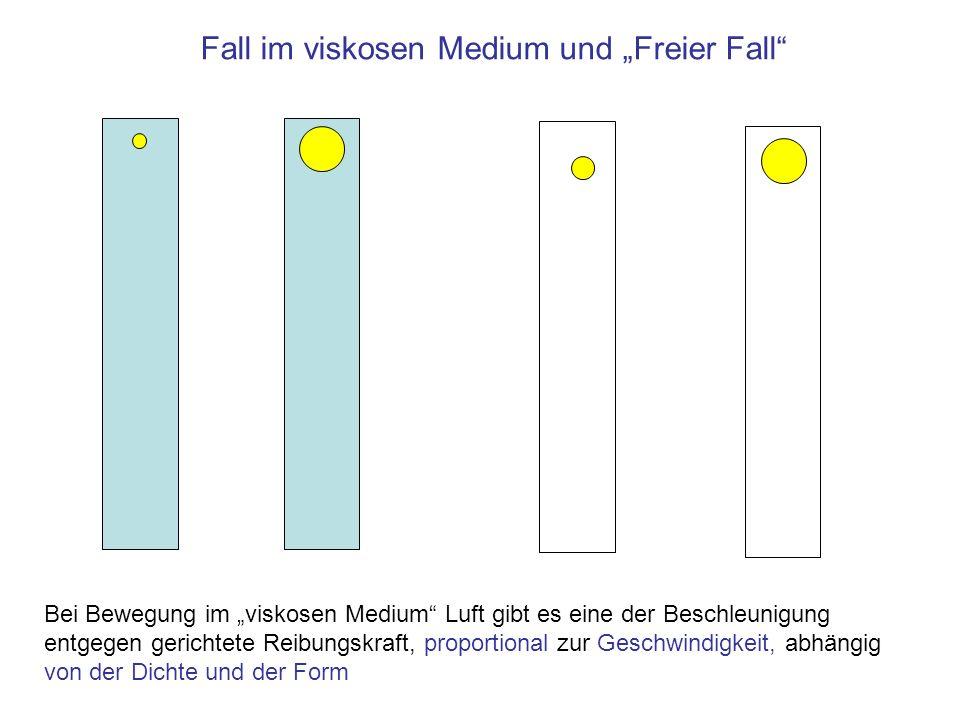 """Fall im viskosen Medium und """"Freier Fall"""