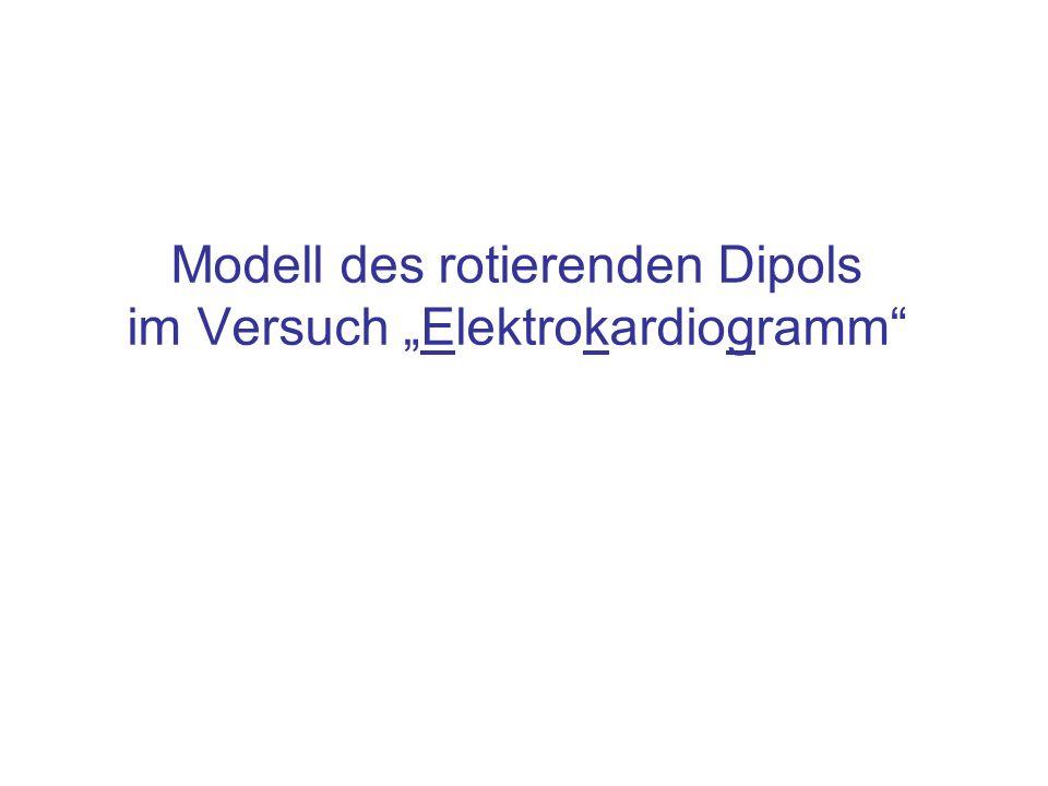 """Modell des rotierenden Dipols im Versuch """"Elektrokardiogramm"""