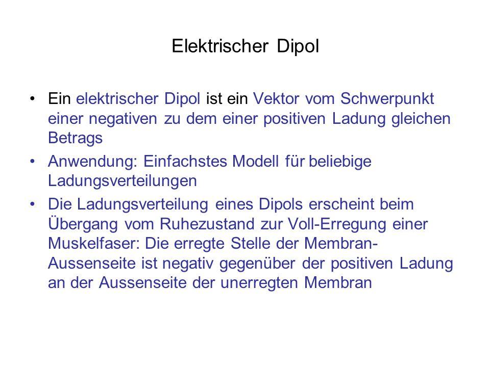 Elektrischer Dipol Ein elektrischer Dipol ist ein Vektor vom Schwerpunkt einer negativen zu dem einer positiven Ladung gleichen Betrags.