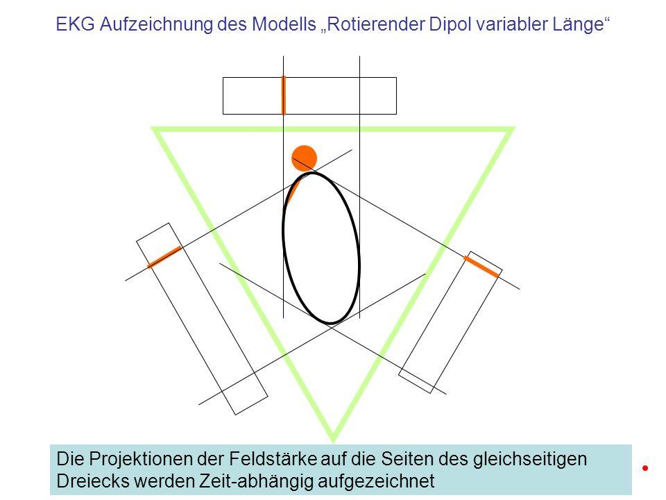 """EKG Aufzeichnung des Modells """"Rotierender Dipol variabler Länge"""