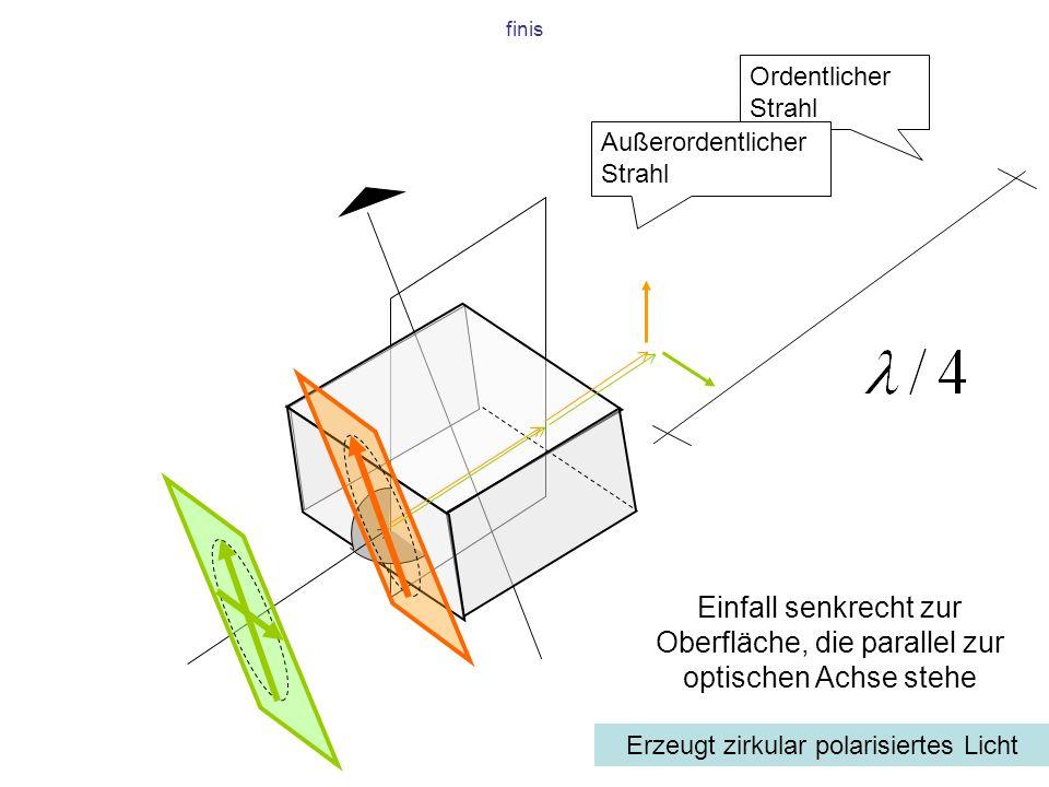 Erzeugt zirkular polarisiertes Licht