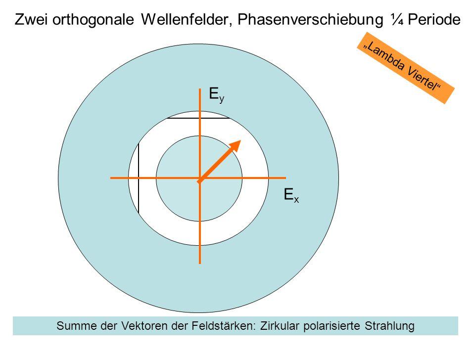 Zwei orthogonale Wellenfelder, Phasenverschiebung ¼ Periode