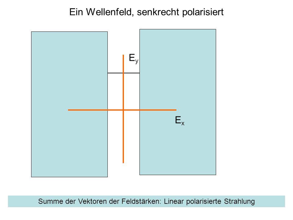Ein Wellenfeld, senkrecht polarisiert