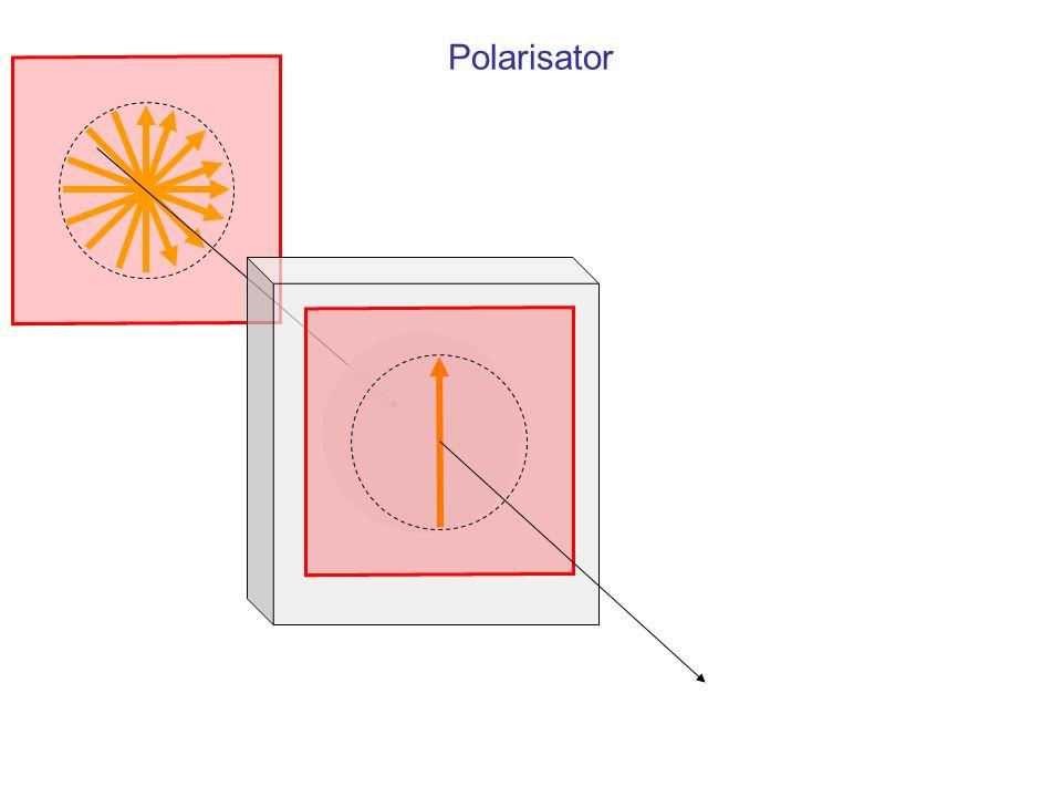 Polarisator