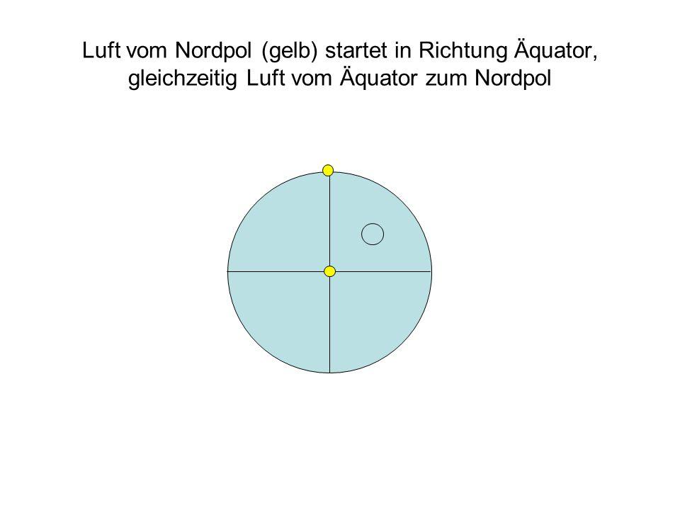 Luft vom Nordpol (gelb) startet in Richtung Äquator, gleichzeitig Luft vom Äquator zum Nordpol