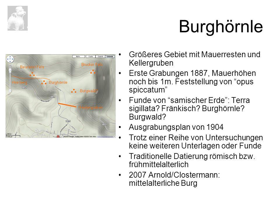 Burghörnle Größeres Gebiet mit Mauerresten und Kellergruben