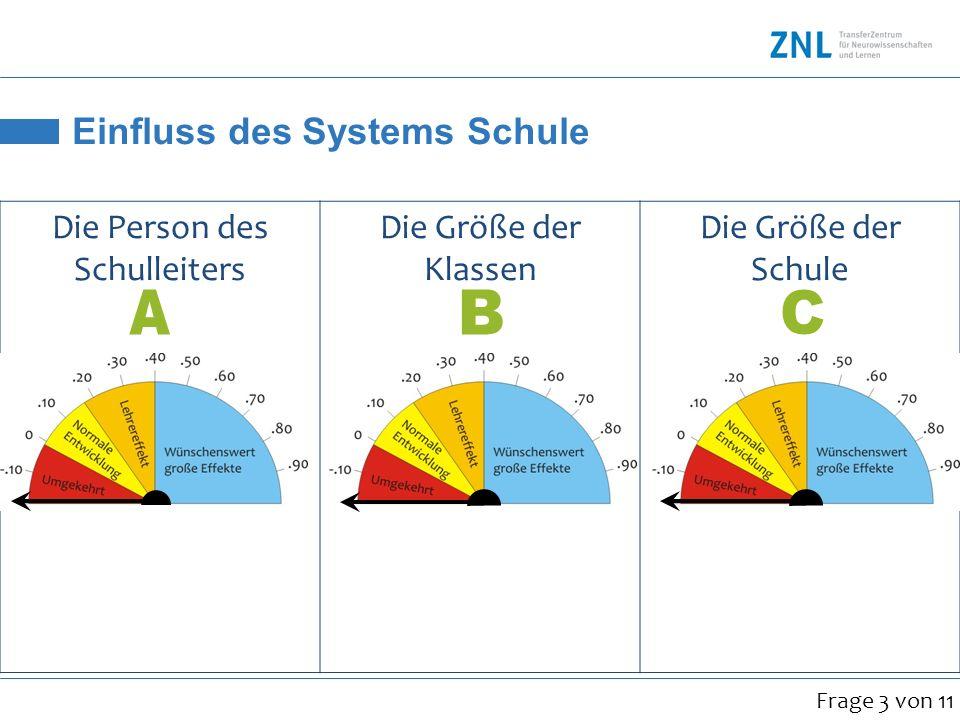 Einfluss des Systems Schule