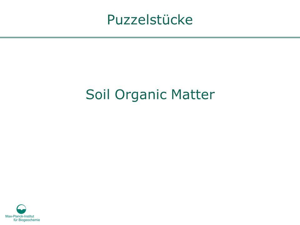 Puzzelstücke Soil Organic Matter