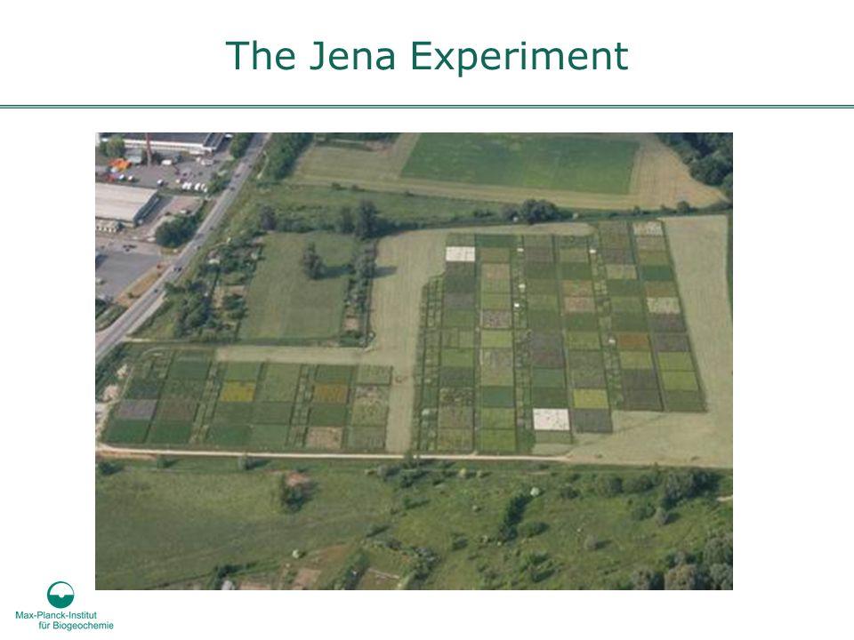 The Jena Experiment
