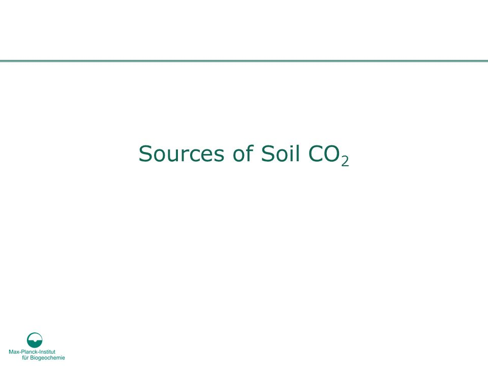 Sources of Soil CO2