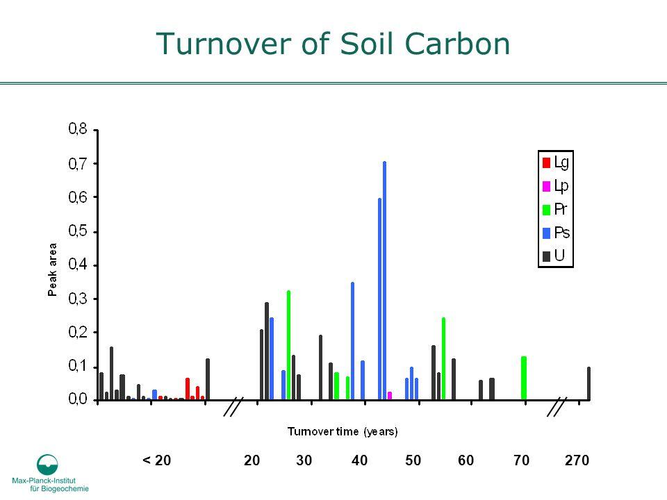 Turnover of Soil Carbon