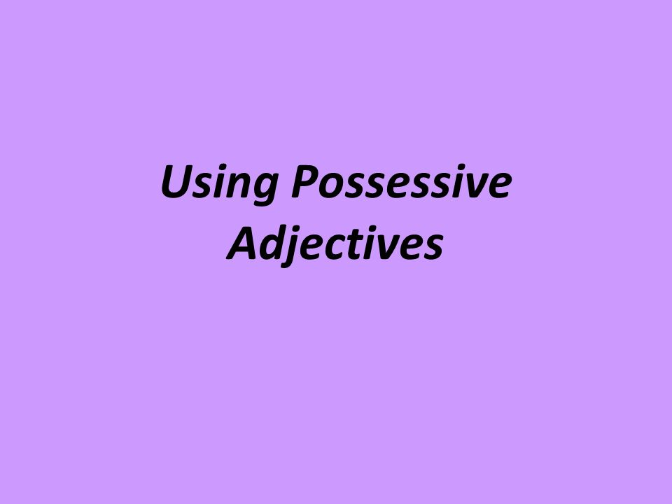 Using Possessive Adjectives