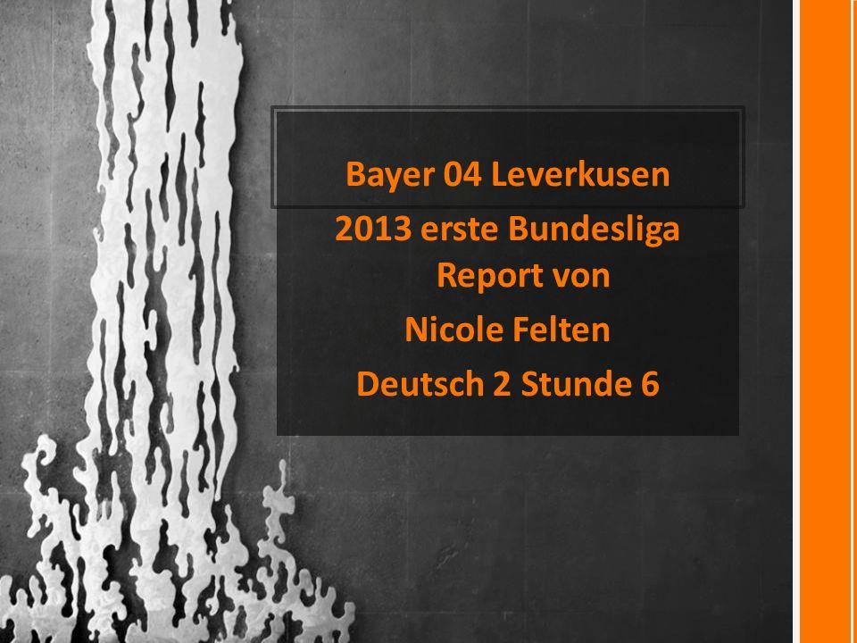 2013 erste Bundesliga Report von