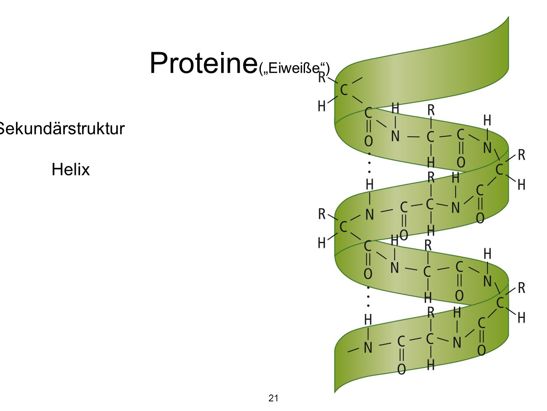 """Proteine(""""Eiweiße ) Sekundärstruktur Helix 21"""