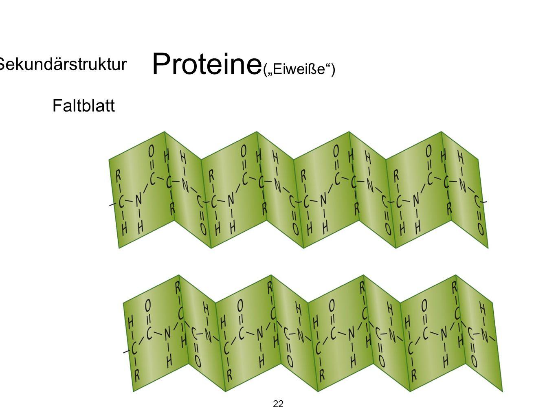 """Proteine(""""Eiweiße ) Sekundärstruktur Faltblatt 22"""