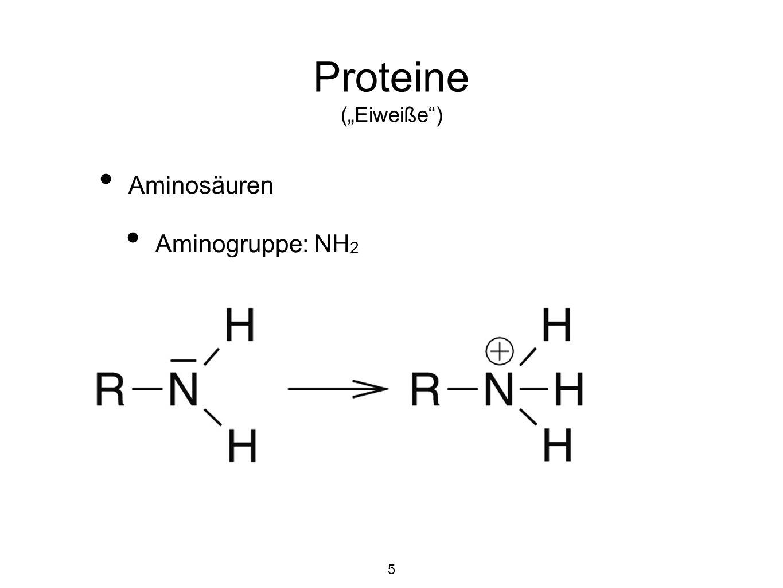 """Proteine (""""Eiweiße ) Aminosäuren Aminogruppe: NH2 5"""