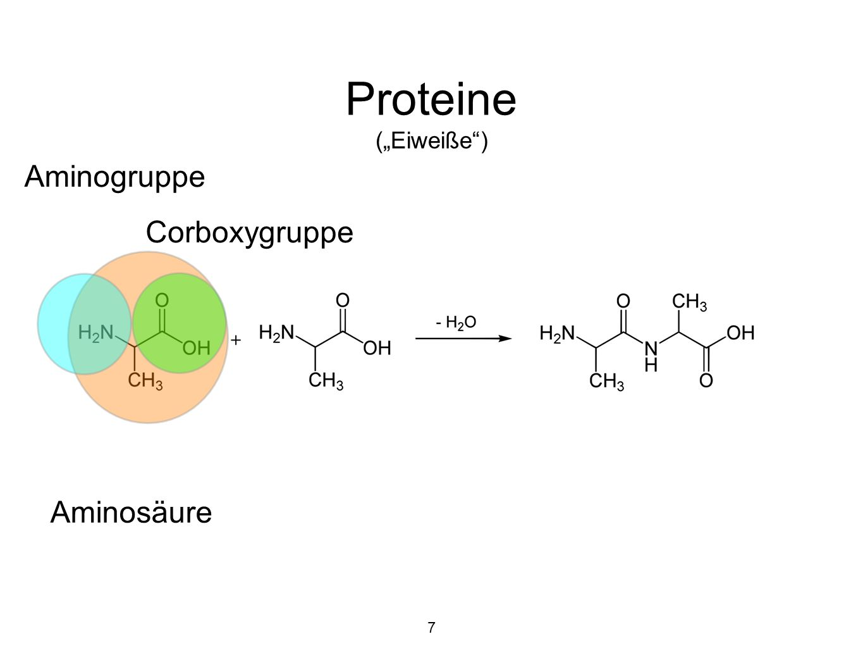 """Proteine (""""Eiweiße ) Aminogruppe Corboxygruppe Aminosäure 7"""