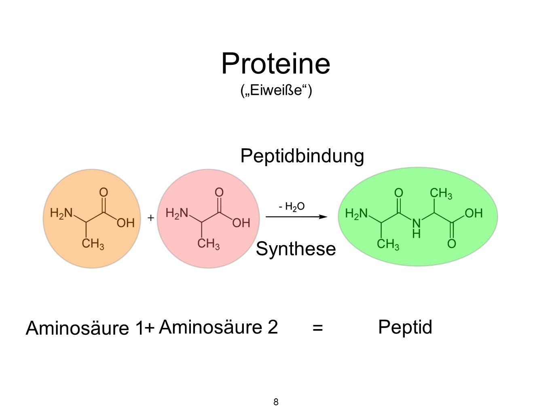 "Proteine (""Eiweiße ) Peptidbindung Synthese Aminosäure 1 +"