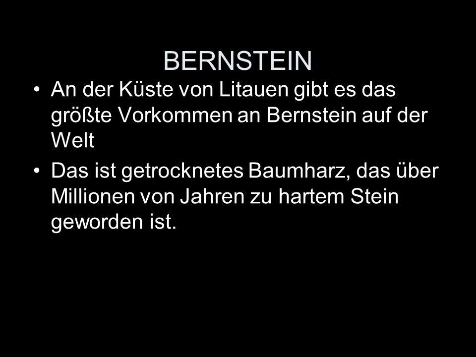BERNSTEIN An der Küste von Litauen gibt es das größte Vorkommen an Bernstein auf der Welt.