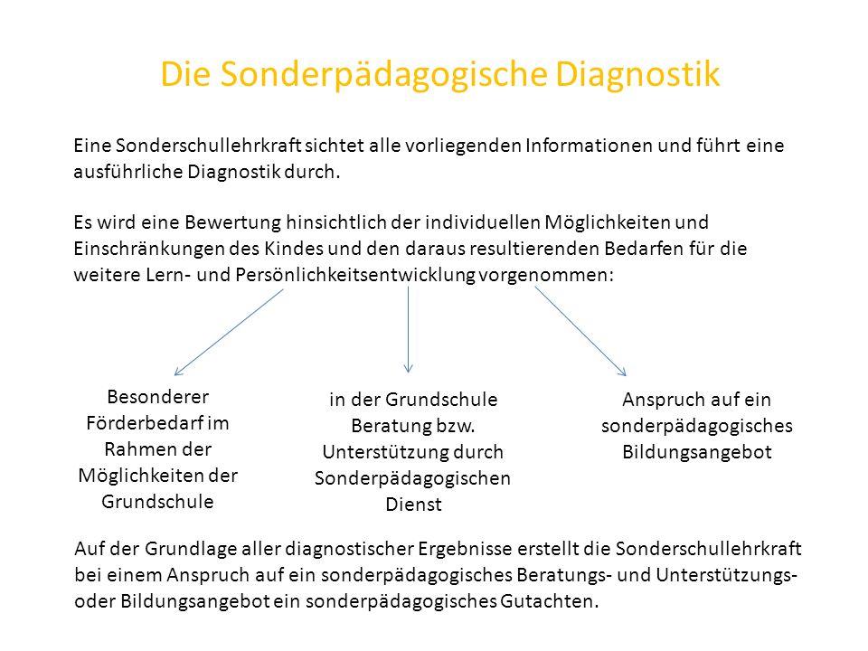 Die Sonderpädagogische Diagnostik