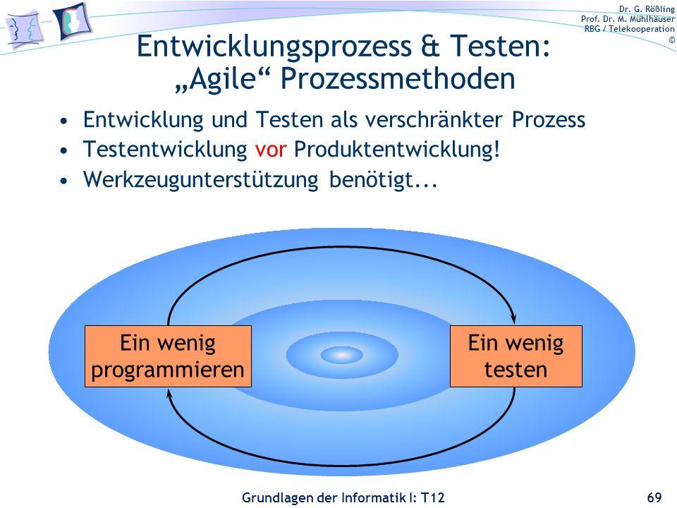 """Entwicklungsprozess & Testen: """"Agile Prozessmethoden"""