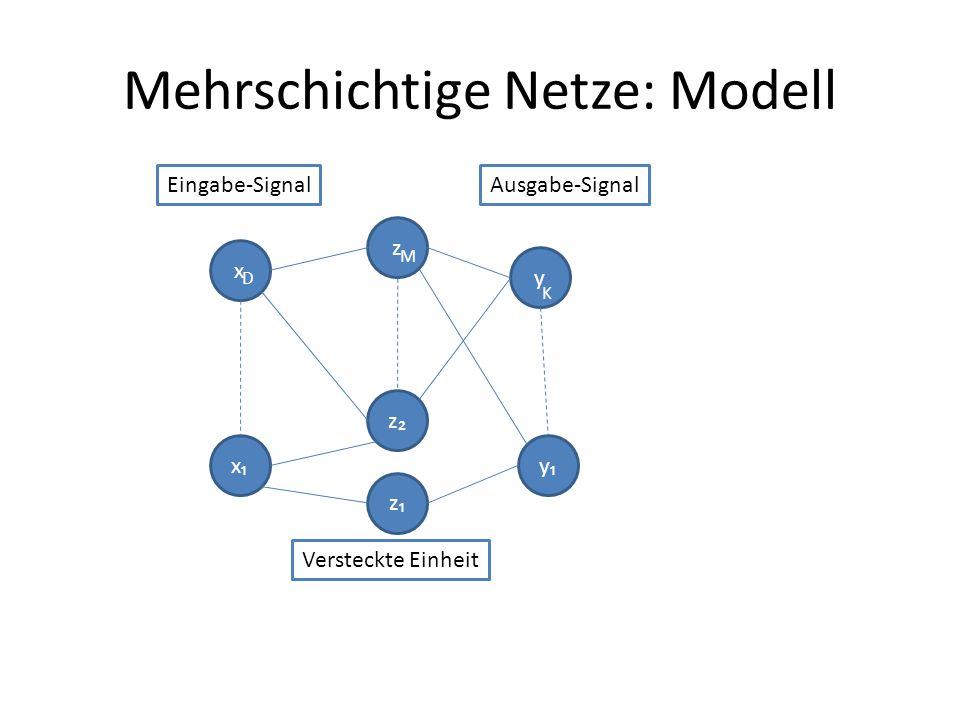 Mehrschichtige Netze: Modell