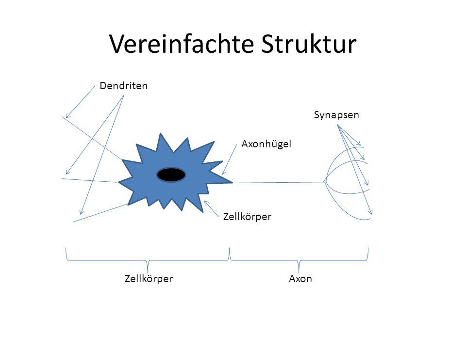 Vereinfachte Struktur