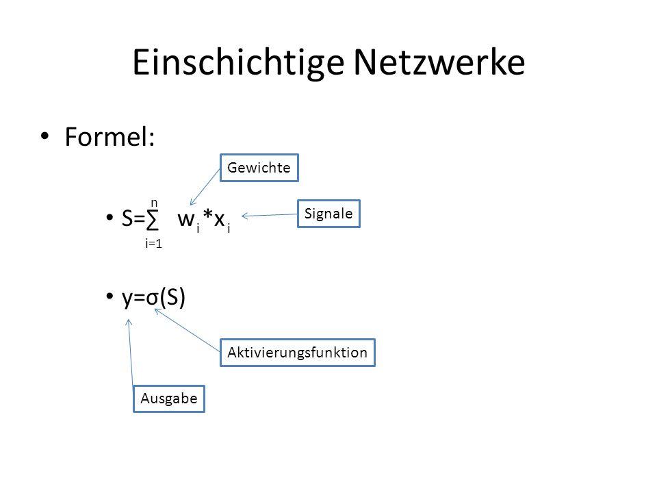 Einschichtige Netzwerke