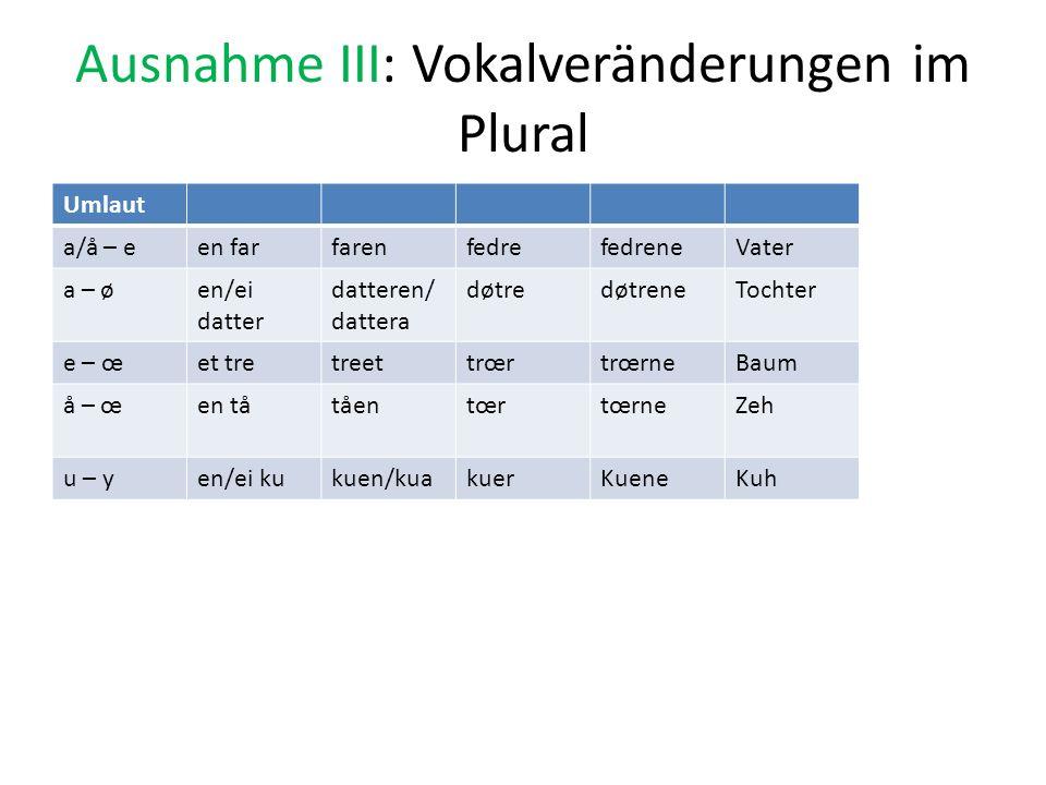 Ausnahme III: Vokalveränderungen im Plural