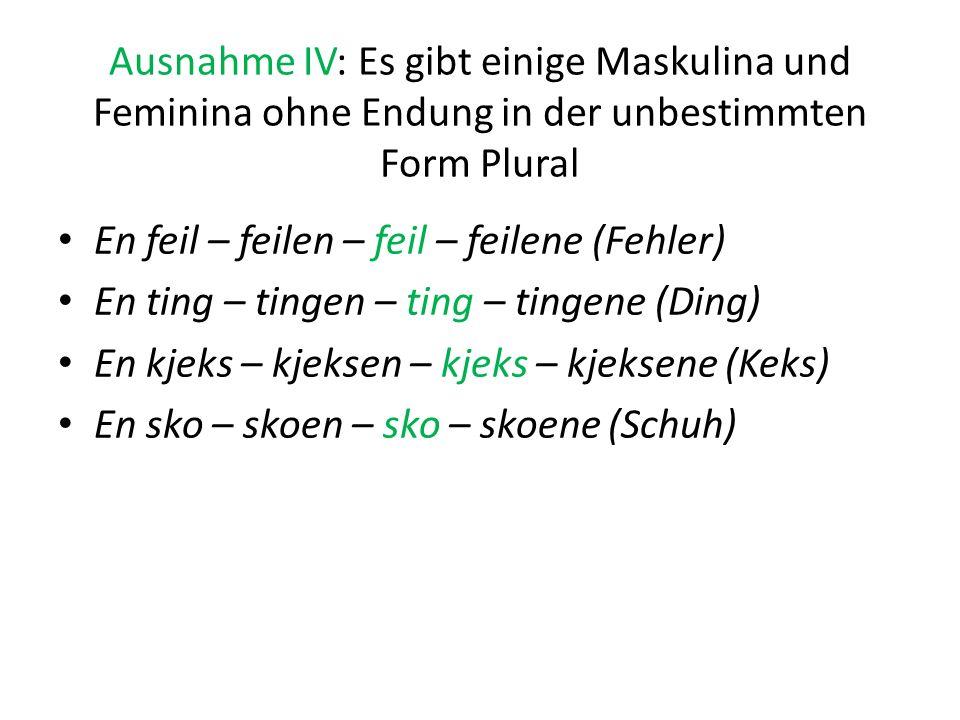 Ausnahme IV: Es gibt einige Maskulina und Feminina ohne Endung in der unbestimmten Form Plural