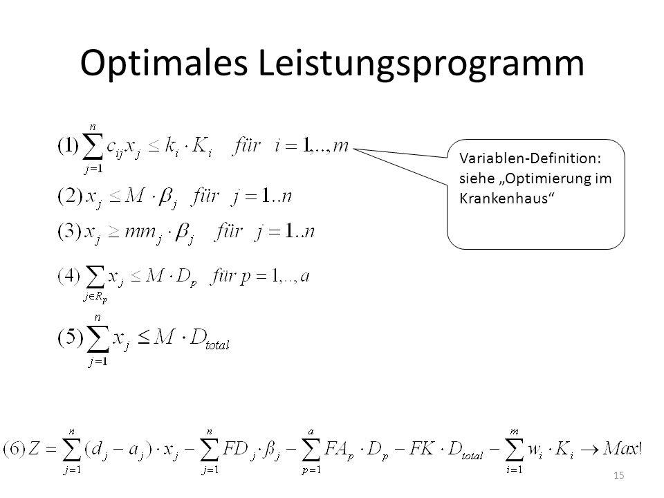 Optimales Leistungsprogramm