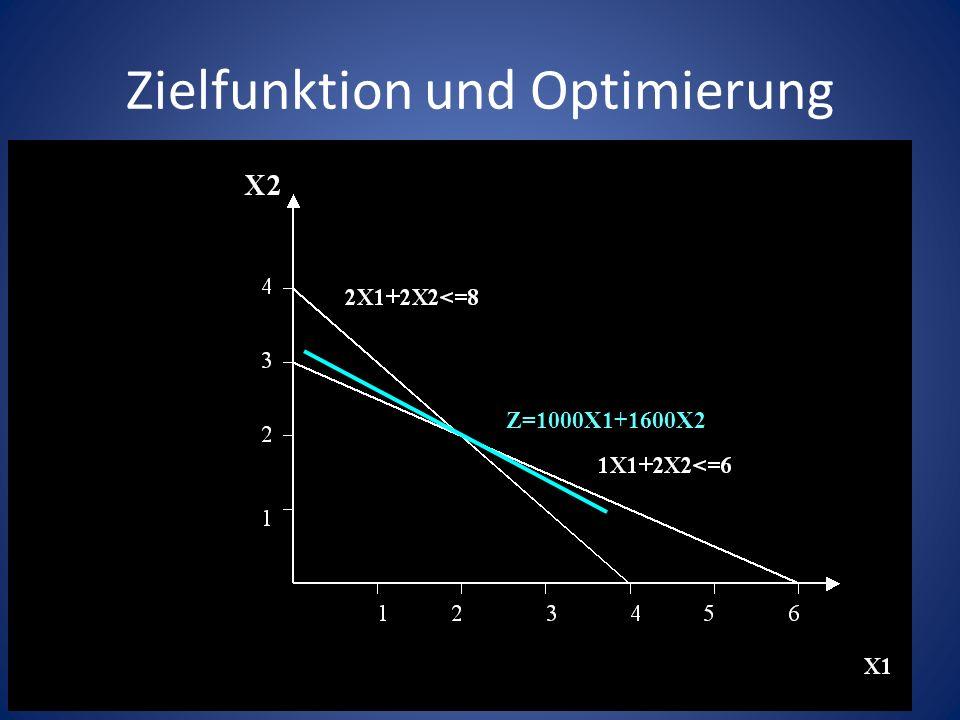 Zielfunktion und Optimierung