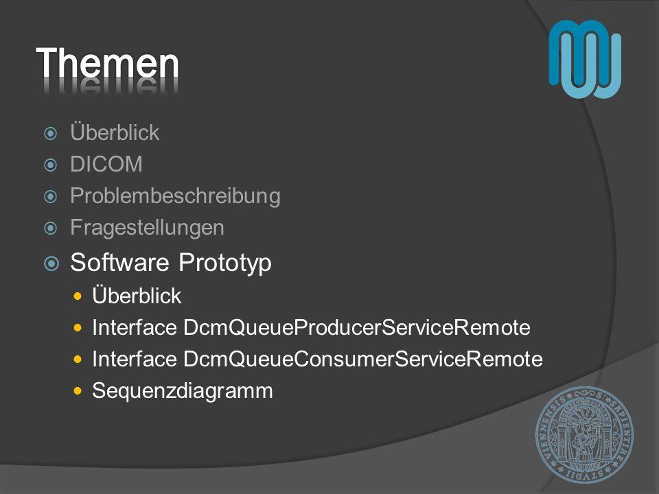 Themen Software Prototyp Überblick DICOM Problembeschreibung