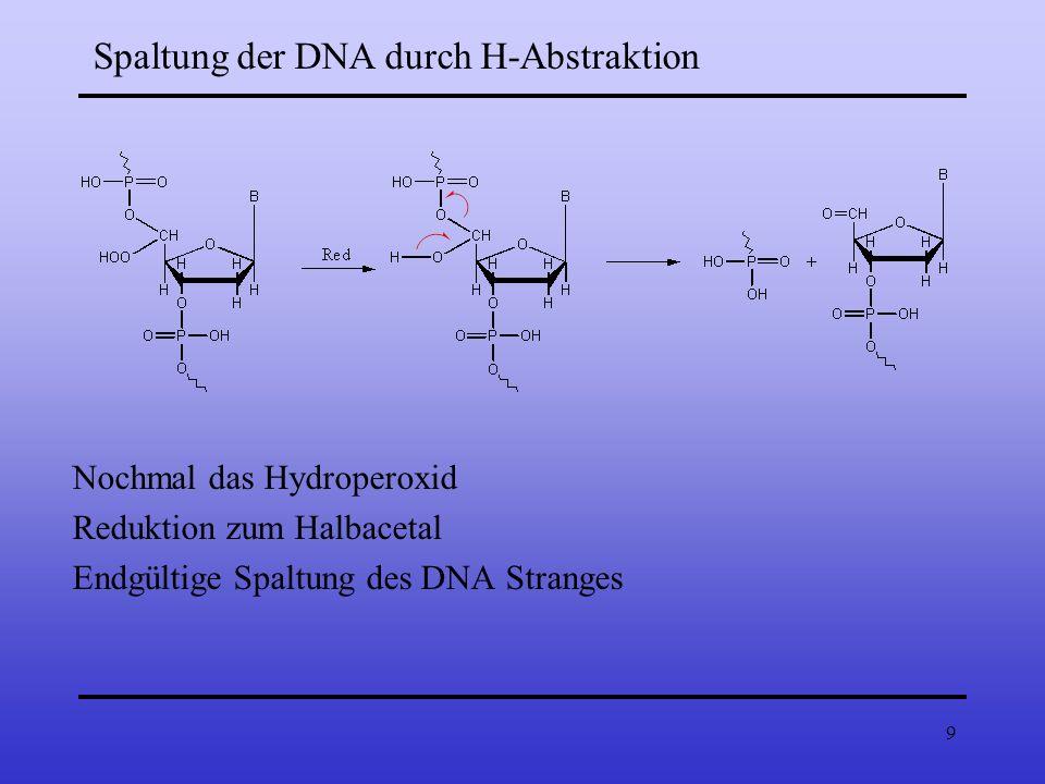 Spaltung der DNA durch H-Abstraktion