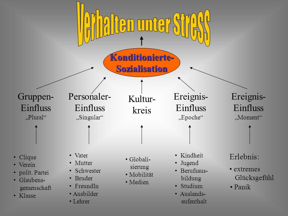 Verhalten unter Stress
