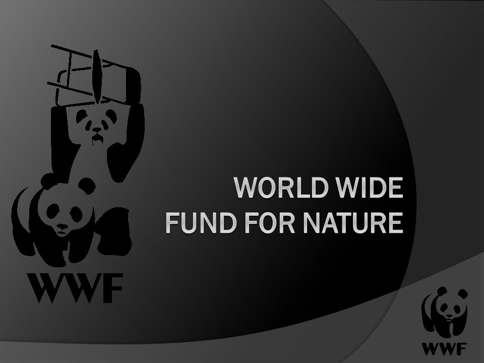 World Wide Fund for Nature