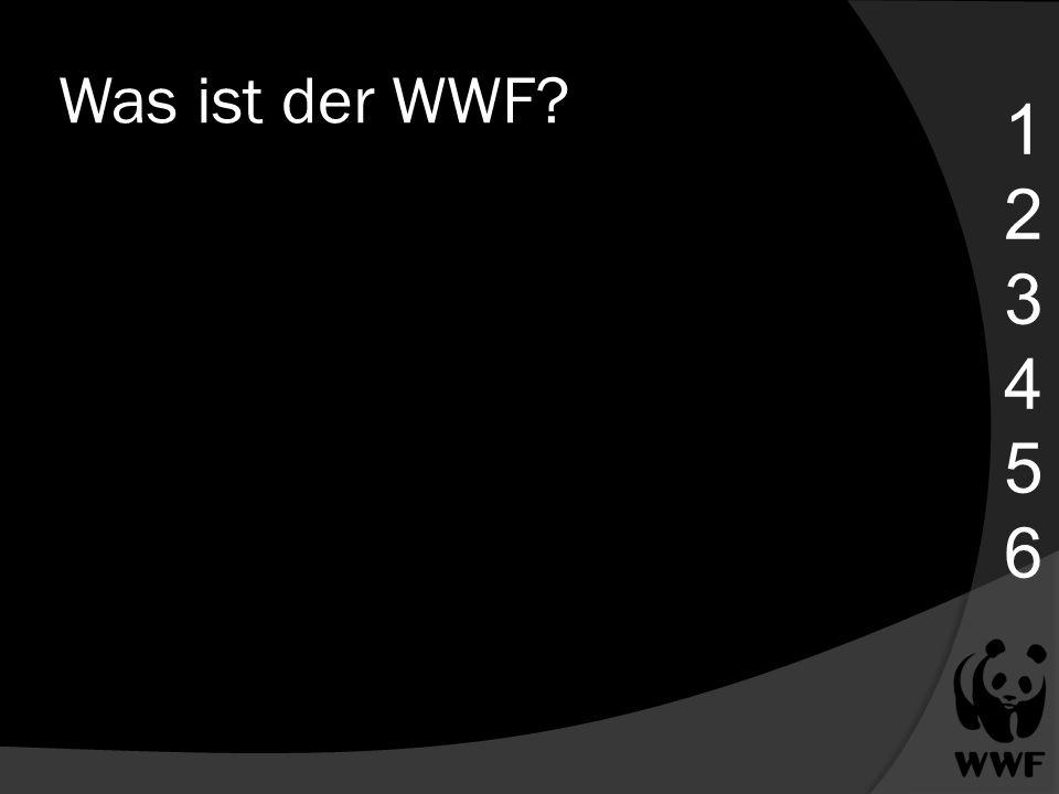 Was ist der WWF 1 2 3 4 5 6