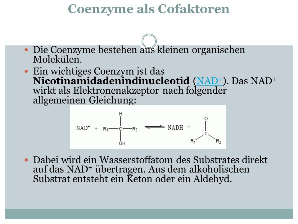 Coenzyme als Cofaktoren