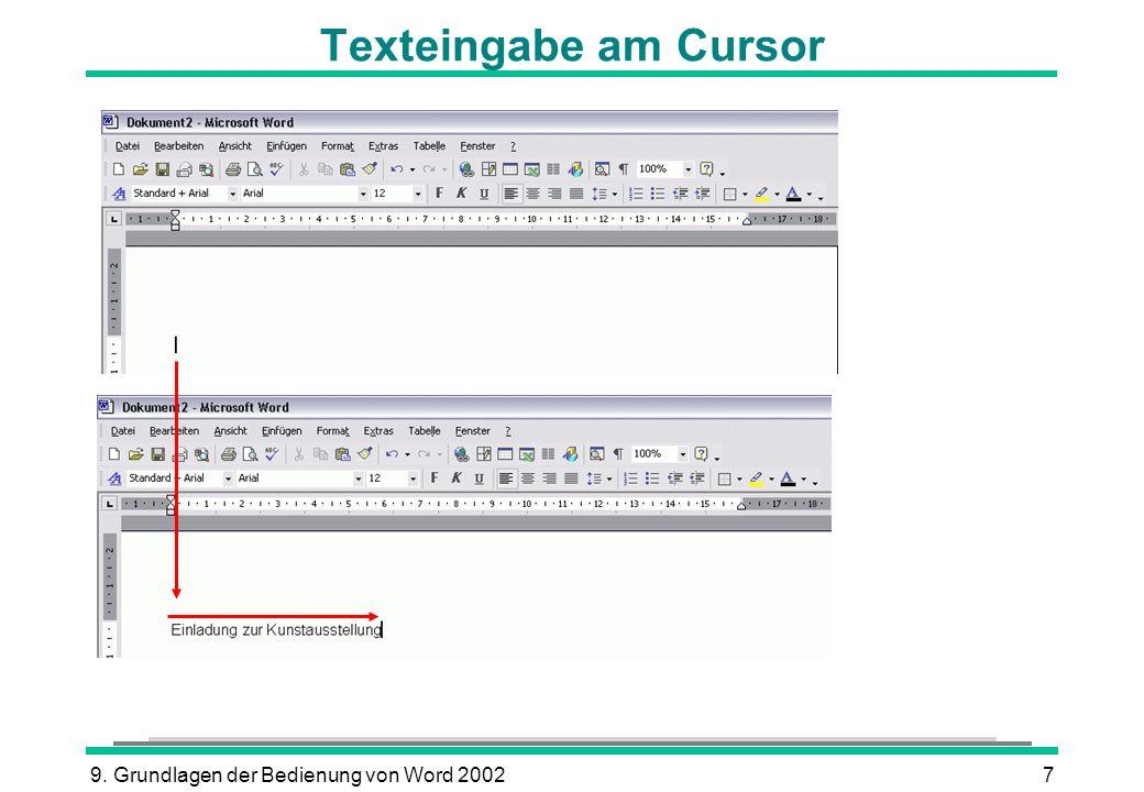 Texteingabe am Cursor 9. Grundlagen der Bedienung von Word 2002