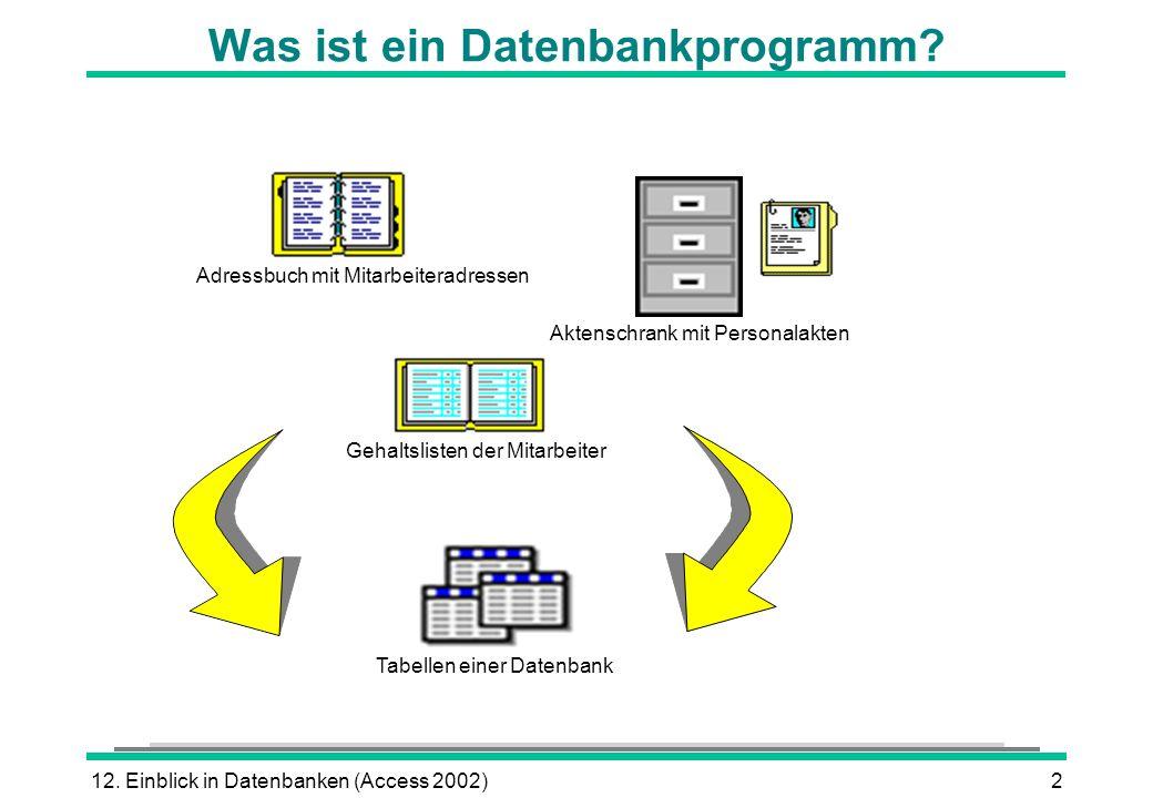 Was ist ein Datenbankprogramm