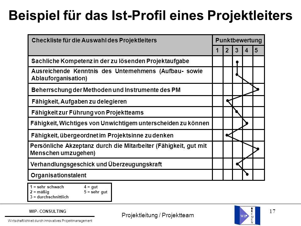 Beispiel für das Ist-Profil eines Projektleiters