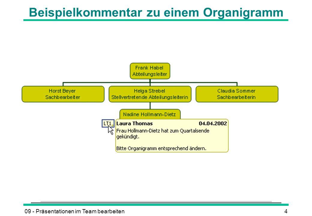 Beispielkommentar zu einem Organigramm