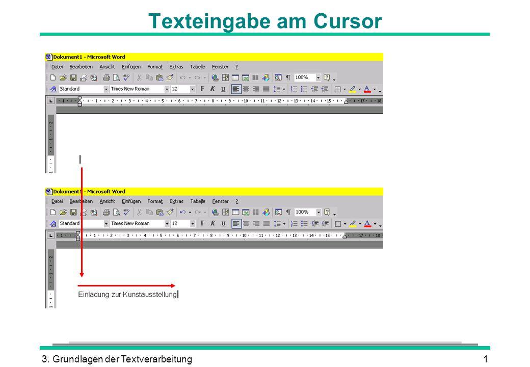 Texteingabe am Cursor 3. Grundlagen der Textverarbeitung
